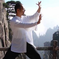 Qigong Mode and Posture Level 2